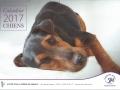 calendrier chiens