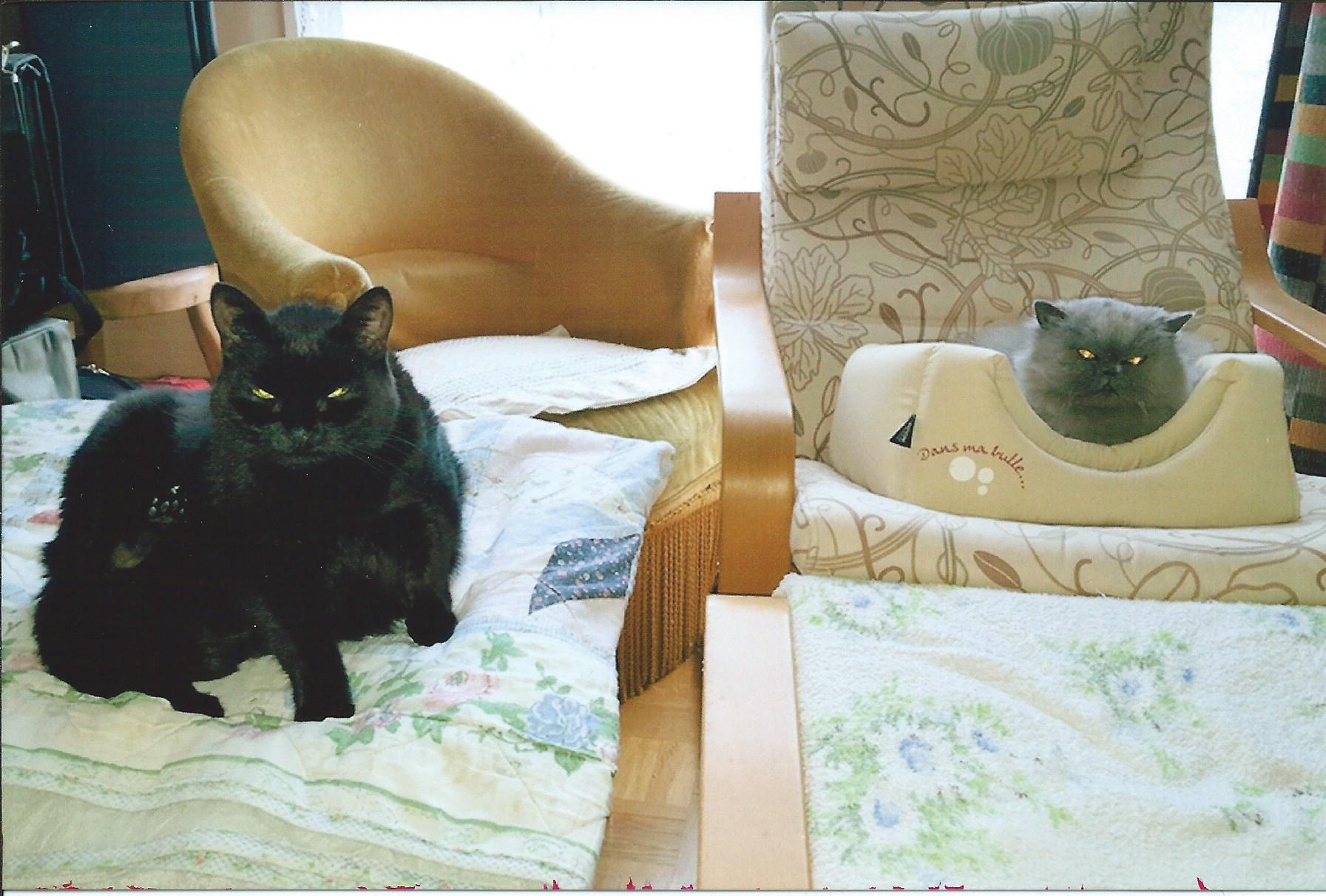 edma gauche et valentine spa des cailloux. Black Bedroom Furniture Sets. Home Design Ideas