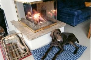 Valco apprécie la chaleur du foyer