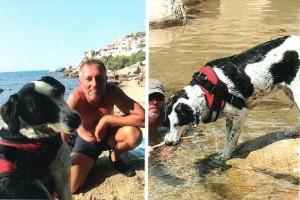Vicky (ex Gwendoline) passe de bonnes vacances en Corse avec ses maîtres et souhaite à ses copains de galère d'avoir bien vite la même chance qu'elle. Voici la carte postale que nous avons reçue.